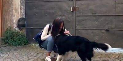 cane e ragazza si abbracciano