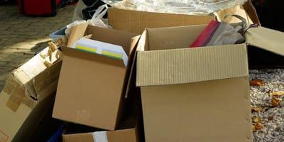 Vigili di Roma trovano un pacco abbandonato: il contenuto li spiazza