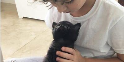 black kitten sitting on child's lap