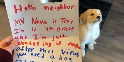 golden retriever puppy sitting behind hand written letter