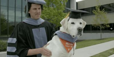 Un labrador  obtiene un doctorado honoris causa