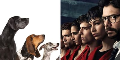 Money Heist characters and dogs