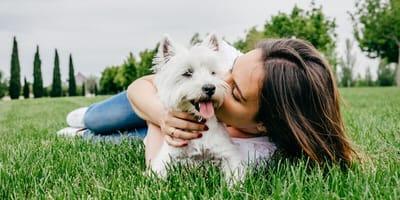 Junge Frau kuschelt mit weißem Hund auf einer Wiese