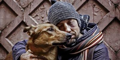 veterinarios de la calle