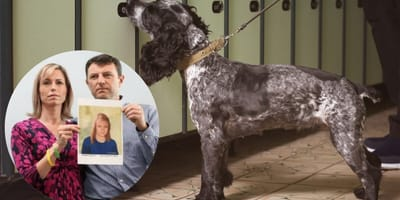 Sniffer dogs hunt out the scent of blood in Madeleine McCann case