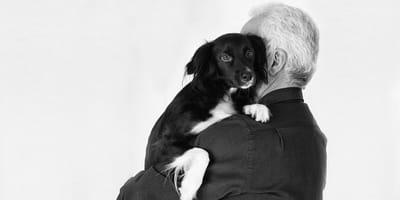 Coronavirus: il governo approva il via libera alla pet-therapy