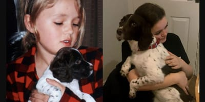 girl holding springer spaniel in her arms years apart