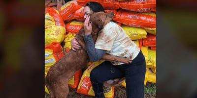 Perro abrazo perú