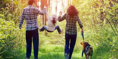 familia arizona pasea bosque encuentra zorro bebe