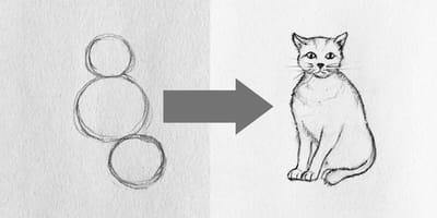 Cómo dibujar un gato en cinco sencillos pasos