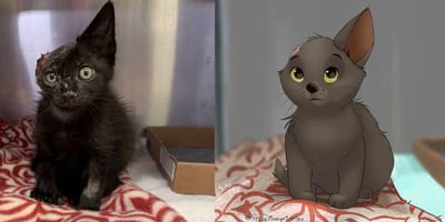 Cat and dog turned into Disney charachters