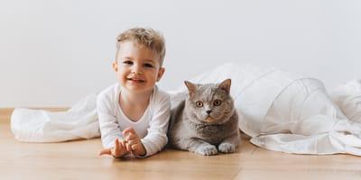 Koty i dzieci – dlaczego warto, aby dziecko wychowywało się z kotem?