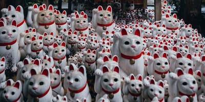 kot-ukryty-między-figurkami