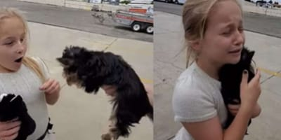 blonde girl carrying yorkshire terrier puppy