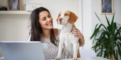 cane e donna in ufficio