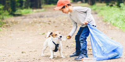 What should I do if my dog ate plastic?