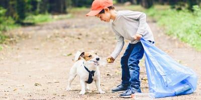 Cosa devo fare se il mio cane mangia plastica?
