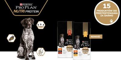 Wypróbuj bezpłatnie wraz ze swoim psem suchą karmę PRO PLAN® Nutriprotein!