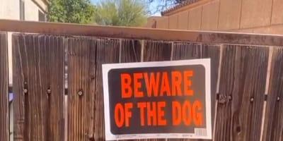 cartel perro casa