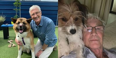 Paul O'Grady and dogs