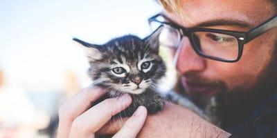 Man cuddling kitten close up