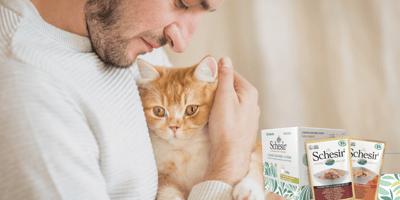Cajas de cartón para gatos y comida  100% natural: lo mejor de lo mejor para  gatos