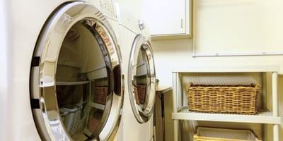 Escucha ruidos en la secadora en medio de una tormenta: ¡abre la puerta y le da un ataque risa!