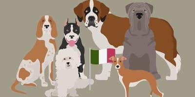 Karikaturen italienischer Hunderassen