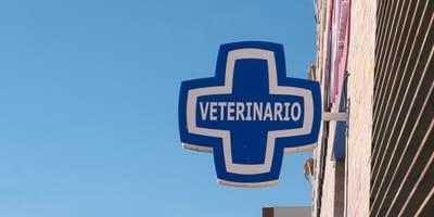 Un criador llega al veterinario y lo que lleva cargando indigna a todo el mundo