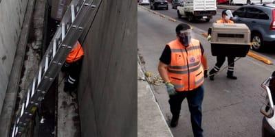 rescatan a perrita en el metro