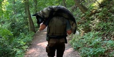Der Parkranger trägt den Schäferhund