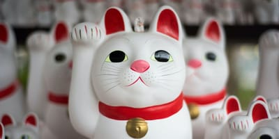 Japoński kot szczęścia maneki-neko