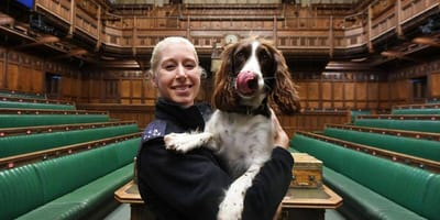 PC Spalding and Poppy the bomb dog in the House of Commons