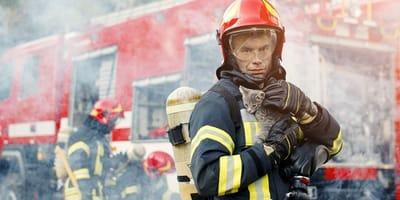 Feuerwehr will Kätzchen retten, doch Jugendliche reagieren mit schlimmer Tat