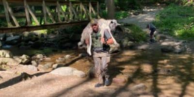 park ranger carrying akita on back