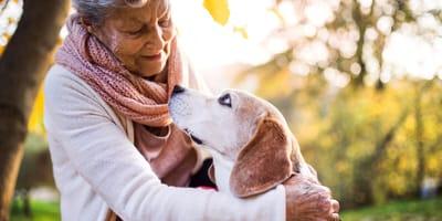 Dia del abuelo 2021: las mejores razas de perro para convivir con un abuelo/a