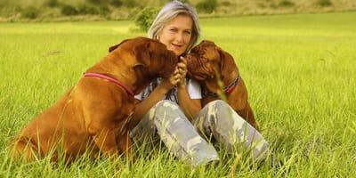 Imię dla dużego psa – jak nazwać psa dużej rasy?