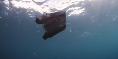 Tasche treibt im Wasser: Er zieht sie heraus und bekommt einen Schock, als er sie öffnet