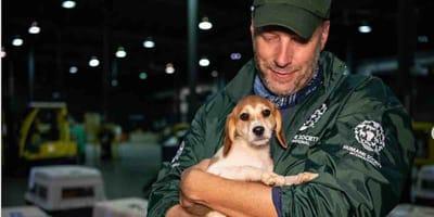 cane e attivista per i diritti degli animali