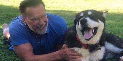 Arnold Schwarzenegger and dog