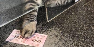 Kocia łapa trzyma bilety do teatru