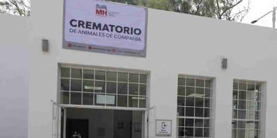 crematorio publico en la cdmx