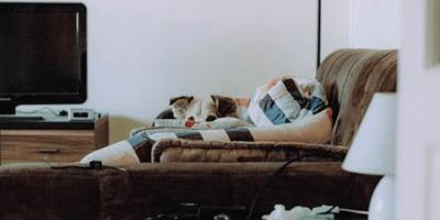 Adopta un perro: 4 días después, ¡decide devolverlo por una razón increíble!