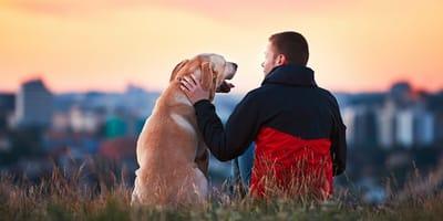 Mężczyzna z psem z widokiem na miasto