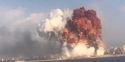 Esplosione a Beirut: il momento vissuto da cani e gatti (Video)