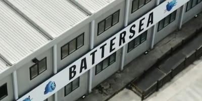 battersea dogs and cats home building