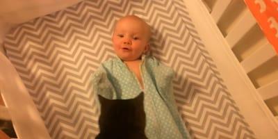 Kätzchen kommt ins Bettchen: Antwort des Babys könnte goldiger nicht sein (Video)