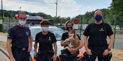 poliziotti con cucciolo di husky