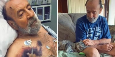 Ośmioletni kot, który nigdy nie miał domu, poznaje mężczyznę z demencją: ich historia porusza tysiące