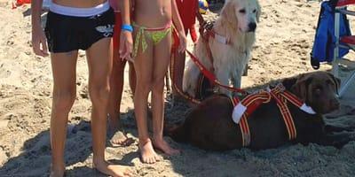 A Tirrenia, i cani bagnini salvano due bambini che stavano annegando